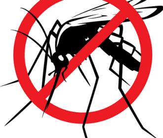 Grad Novalja provodi sustavnu preventivnu mjeru suzbijanja letećih insekata